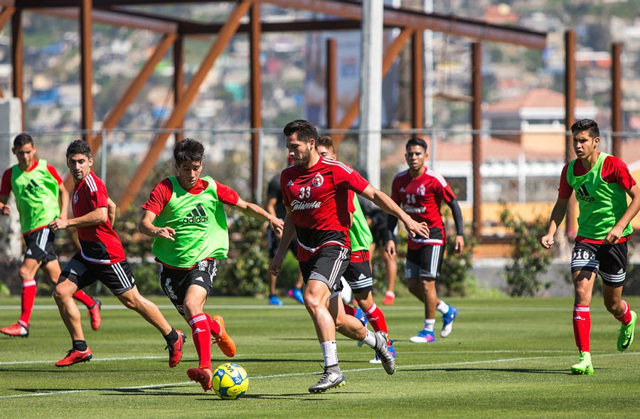 Queretaro vs Club Tijuana: Xolos Face Difficult Test Against the Reinvigorated Gallos Blancos